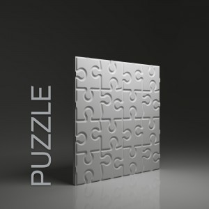 WALL PANEL PUZZLE