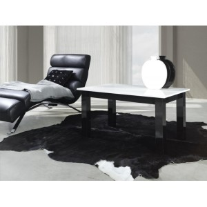 COFFEE TABLE T24