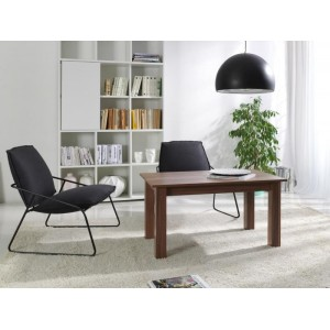 COFFEE TABLE T30