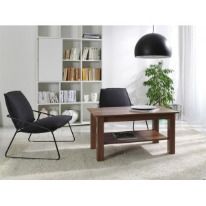 COFFEE TABLE T31